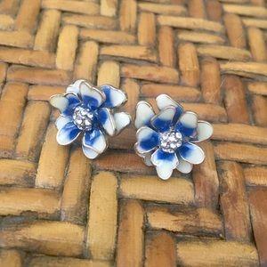 Beautiful Cobalt Blue Earrings